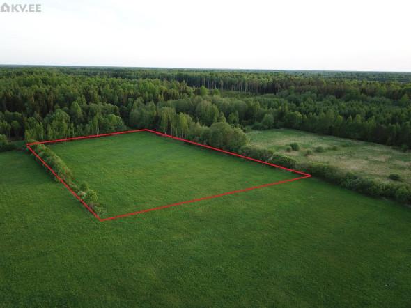 Viluvere, Põhja-Pärnumaa vald, Pärnumaa